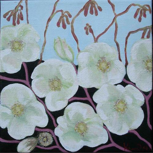 10-Rosa-rogusa---hvid